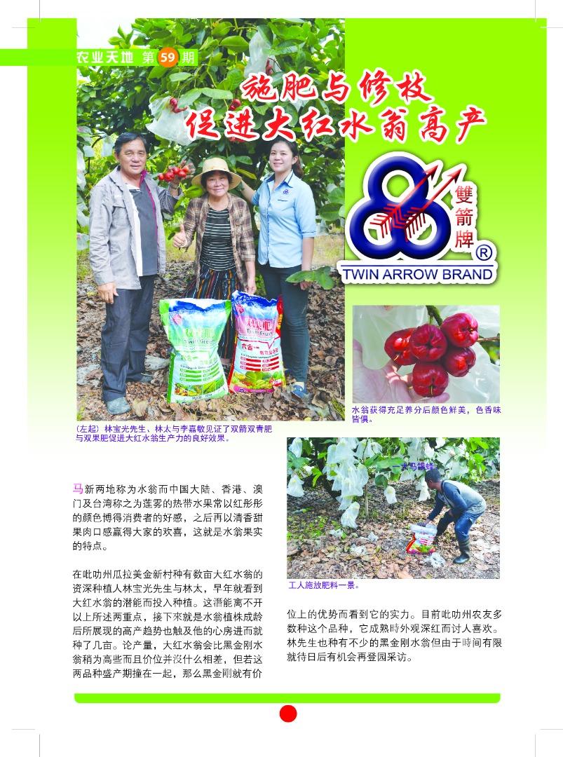 大红水蓊-施肥与修枝